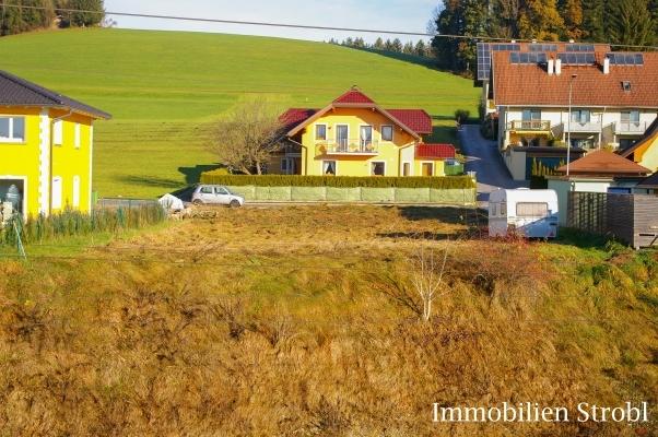 immobilien strobl in salzburg verkauft sonniger baugrund in neumarkt am wallersee k stendorf. Black Bedroom Furniture Sets. Home Design Ideas